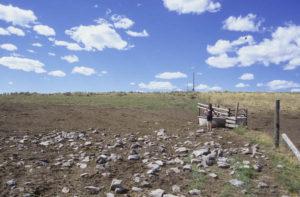 Spring development Antelope Basin Beaverhead Deerlodge NF, Montana